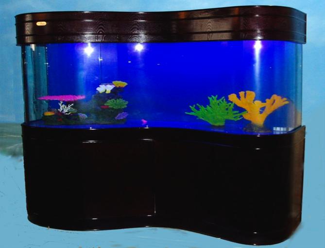 crystal fish aquarium - photo #30