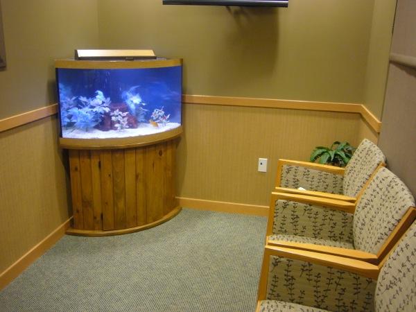54 Gallon Corner Aquarium Aquariums Ct Crystal Clean Fresh Water Photos & 90 Gallon Corner Aquarium - 1000+ Aquarium Ideas